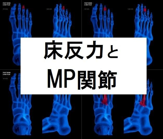 床反力で安定したパフォーマンス。バレエで重要なMP関節って知ってる?