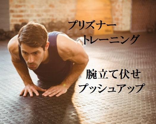 プリズナートレーニング(囚人トレ)腕立て伏せの10ステップ最強解説